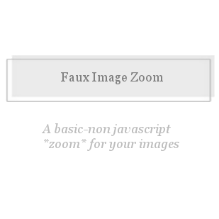 Faux Image Zoom-