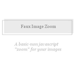 Faux Image Zoom-