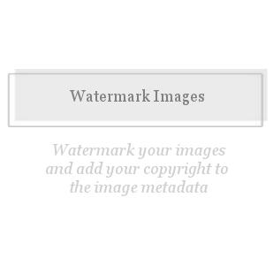 Watermark Images-